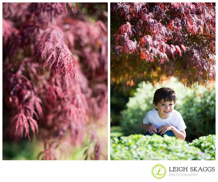 Norfolk Family & Childrens Photographer ~Mason is Adorable!!!~